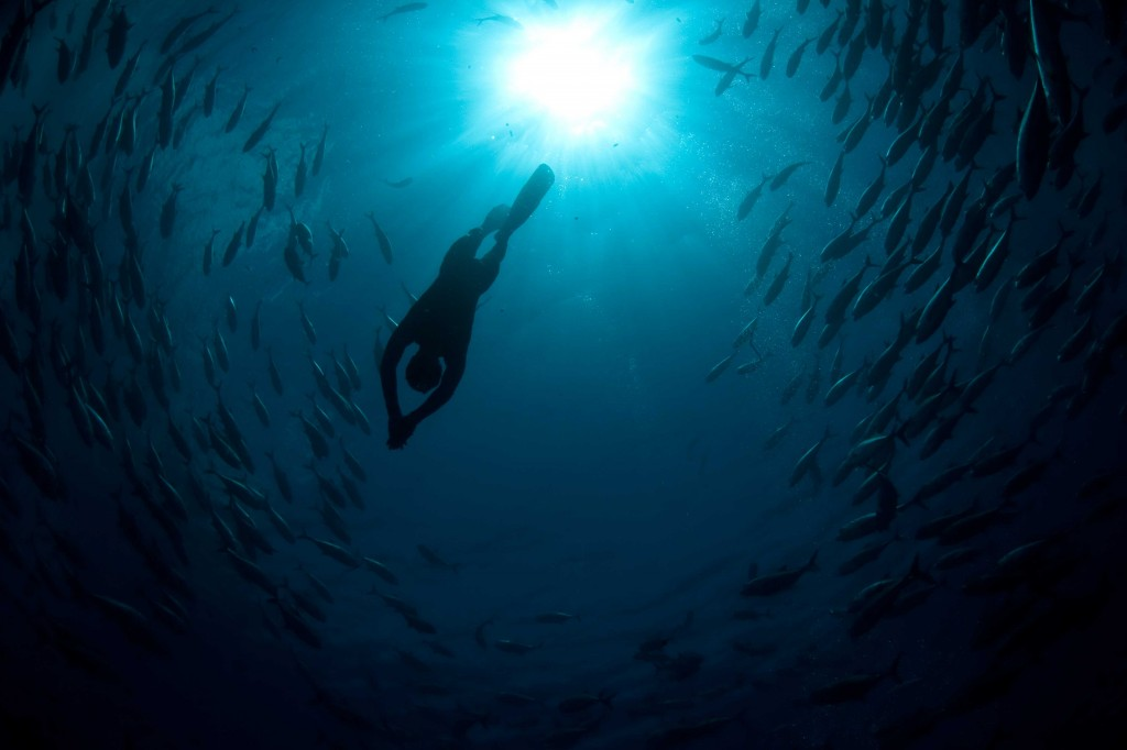 Un buzo adentrándose en las profundidades del océano